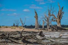 Hinterland-Lagune Stockbild
