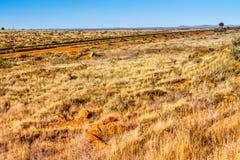 Hinterland-Süd-Australien-Gräser und Bahnlinie lizenzfreie stockfotografie