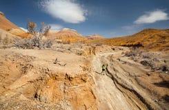 Hinterlaufendes Abenteuer stockfotos
