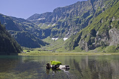 The Hintersee in Felbertauern valley Royalty Free Stock Photo