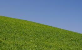 Hinunter den vollkommenen Hügel Stockbilder