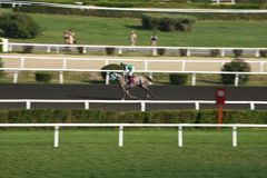 Hipódromo da corrida de cavalos imagem de stock