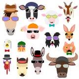 Hip farm animal faces set Stock Photos
