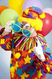 Hip Hop Clown Royalty Free Stock Photo