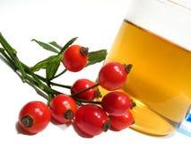Hip rose tea. Detail hip rose and tea in glass stock photos