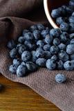 Hipe ripe blueberries Royalty Free Stock Photos
