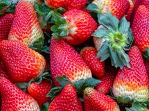 Hipe of strawberries in a market. Macro photography of a pile of strawberries, captured at the traditional local market of the colonial town of Villa de Leyva royalty free stock photography