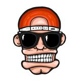 Hiphopgezicht, met zonnebril en GLB royalty-vrije illustratie