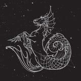 Hipocampo ou criatura mythologic do kelpie Esboço em um fundo nightsky Fotografia de Stock