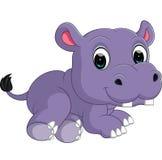 Hipopótamo bonito Foto de Stock Royalty Free