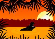 Hipopótamo en puesta del sol libre illustration