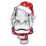 Hipopótamo en sombrero de la Navidad Foto de archivo libre de regalías