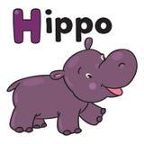 Hipopótamo engraçado pequeno, para ABC Alfabeto H Imagens de Stock