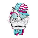 Hipopótamo fresco que lleva un casquillo y las gafas de sol ilustración del vector