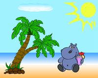 Hipopótamo na praia Fotografia de Stock