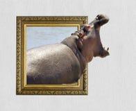 Hipopótamo no quadro com efeito 3d Fotos de Stock