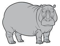 Hipopótamo ou hipopótamo Fotografia de Stock Royalty Free