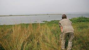 Hipopótamo selvagem de Takes Photo Of do fotógrafo do naturalista no lago com a câmera no tripé video estoque