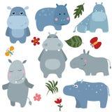 Hipopótamos divertidos determinados Imagenes de archivo