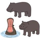 hipopotam ilustracja wektor