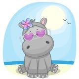 Hipopotam na plaży Fotografia Royalty Free