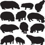 Hipopotam sylwetki kontur Obrazy Royalty Free