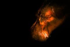 Hipopotam z czarnymi tło Zdjęcie Stock