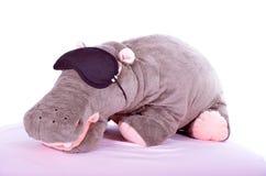 Hipopotam zabawka Fotografia Stock