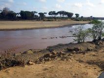 Hipopotama basen w Kenja Zdjęcia Royalty Free