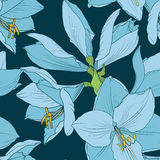 Hippeastrum amaryllis seamless pattern blue navy Stock Photo