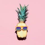 Hippie-Ananasmode-accessoires und -früchte Stockbilder