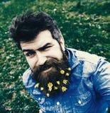 Hippie auf dem Blinzeln des Gesichtes sitzt auf dem Gras, defocused Mann mit Bart genießt Frühling, grünen Wiesenhintergrund Ansi Lizenzfreies Stockbild