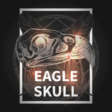 Hippie-Design mit Eagle Skull Stockbild