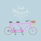 Hippie-Fahrrad, das gerade flache Vektorillustration der Heirat heiratet Lizenzfreies Stockfoto