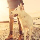 Hippie-Mädchen, das mit Hund an einem Strand während des Sonnenuntergangs, starker Blendenfleckeffekt spielt Stockfotografie