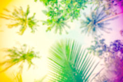 Hippie rasta style blurred nature background. Royalty Free Stock Image