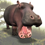 Hippo # 03 Royalty Free Stock Photo