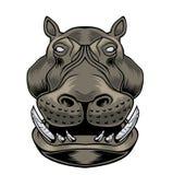 Κεφάλι Hippo διανυσματική απεικόνιση