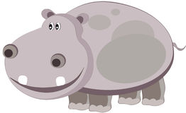 Hippo. Vectors illustration shows a gray hippopotamus stock illustration