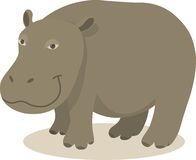 Hippo. Vector illustration of smiling hippo Royalty Free Stock Photography