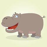 Hippo Royalty-vrije Stock Afbeeldingen