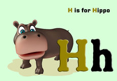 Hippo with alphabet Stock Photos