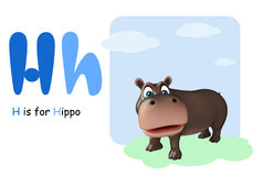 Hippo with alphabet Royalty Free Stock Photos