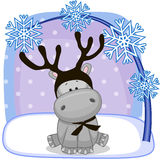 Hippo with antlers Stock Photos