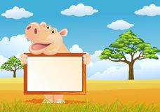 Hippo with blank sign Stock Photo