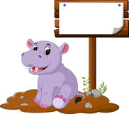 Hippo with blank sign Stock Images