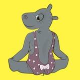 Hippo in bodysuit making gymnastics Stock Image