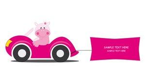 Hippo-car Stock Photo