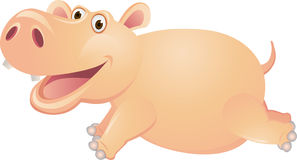 Hippo cartoon runnning Royalty Free Stock Photography