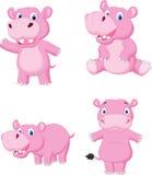 χαριτωμένο hippo κινούμενων σχ&e Στοκ εικόνες με δικαίωμα ελεύθερης χρήσης